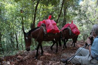 Parque Nacional Sierra de Agalta, Olancho, Honduras