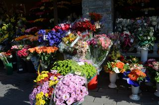 Flower Market, Old Town Tallinn, Estonia