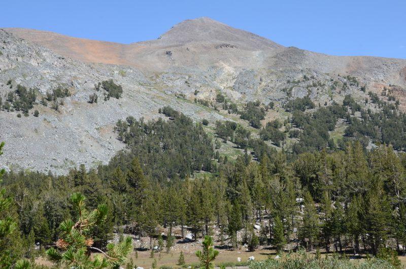 20120731 Mt. Dana 006